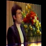 اجرای شجریان و لطفی در تلوزیون – بهار دلکش | صوتی و تصویری