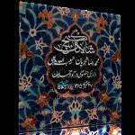 گنج شایگان – اجرای خصوصی محمدرضا شجریان و حبیبالله بدیعی – همایون