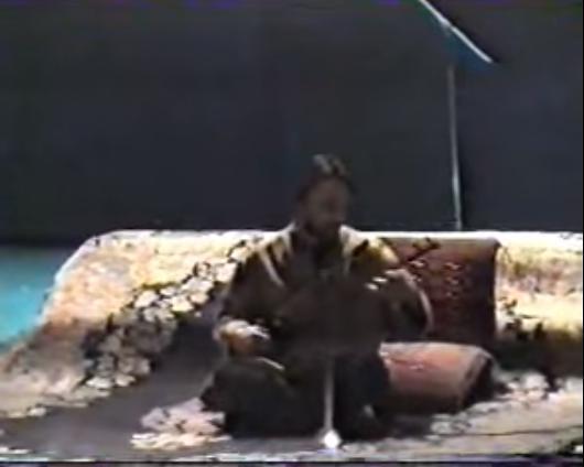 سهتارنوازی حسین علیزاده در سهگاه - کنسرت تصویری