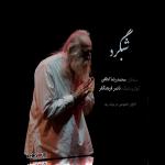 شبگرد – اجرای خصوصی محمدرضا لطفی و ناصر فرهنگفر